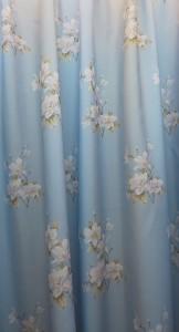 藍色底喇叭花